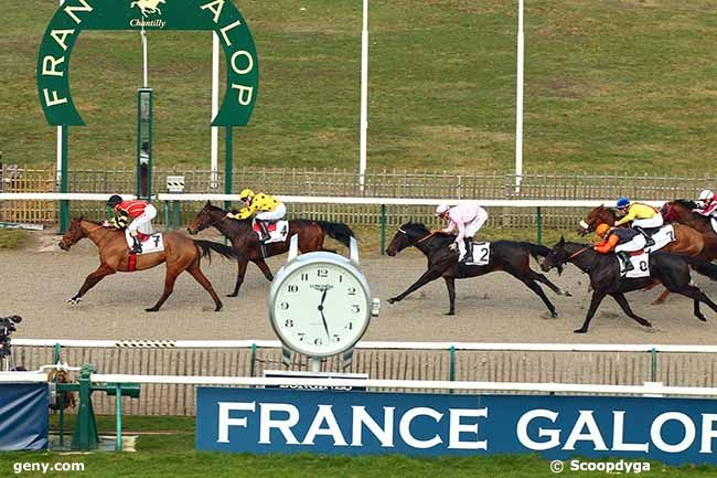 12/02/2019 - Chantilly - Prix du Carrefour Laversin : Result