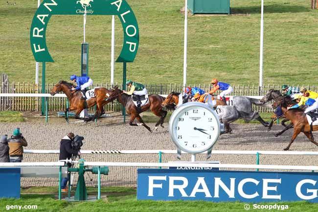 14/02/2020 - Chantilly - Prix de la Fontaine d'Orry : Arrivée