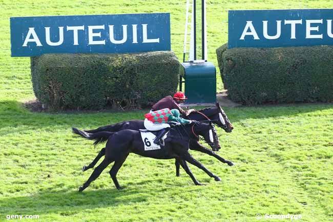 21/11/2020 - Auteuil - Prix Sambristan : Arrivée