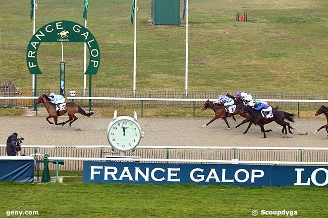 12/02/2019 - Chantilly - Prix du Carrefour du Chapitre : Result