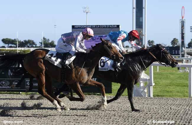 15/02/2020 - Cagnes-sur-Mer - Prix de Sainte-Maxime : Arrivée