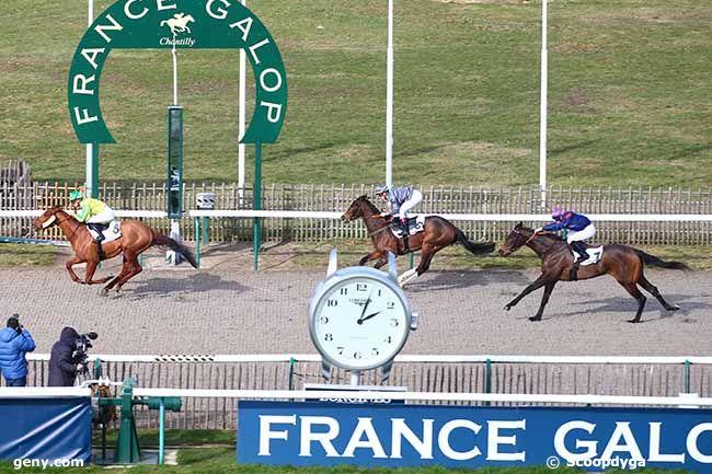 12/02/2019 - Chantilly - Prix du Carrefour Papillon : Result