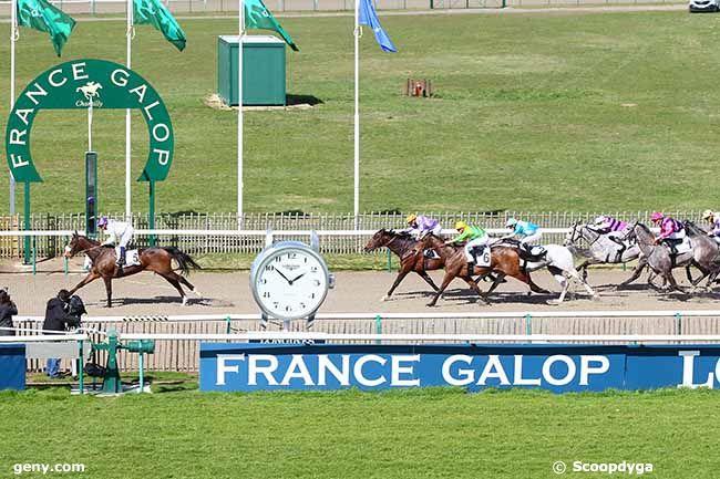 19/03/2019 - Chantilly - Prix Sagaro : Arrivée