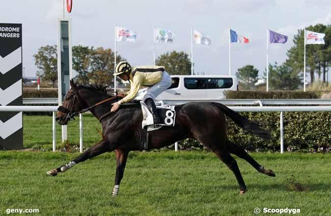 13/11/2019 - Angers - Handicap d'Angers Loire Métropole : Result