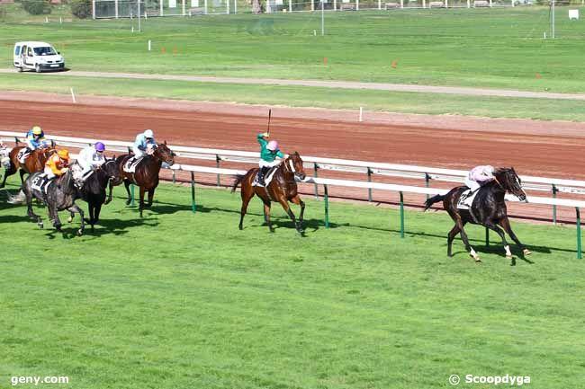 28/10/2013 - Marseille-Borély - Grand Handicap de Marseille : Arrivée