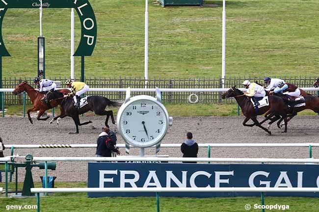 04/05/2021 - Chantilly - Prix de la Fosse aux Cerfs : Arrivée