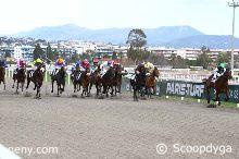 20/01/2020 - Cagnes-sur-Mer - Prix du Languedoc : Arrivée
