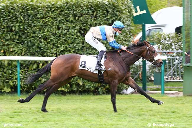 04/05/2021 - Chantilly - Prix des Closeaux : Arrivée