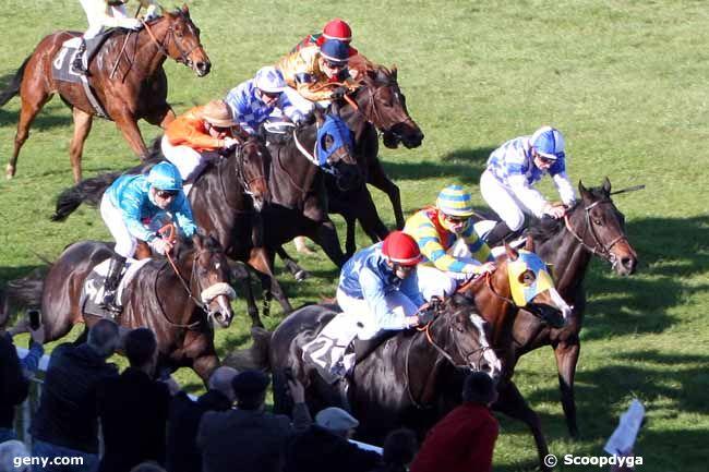 31/10/2011 - Fontainebleau - Prix de la Brie : Arrivée