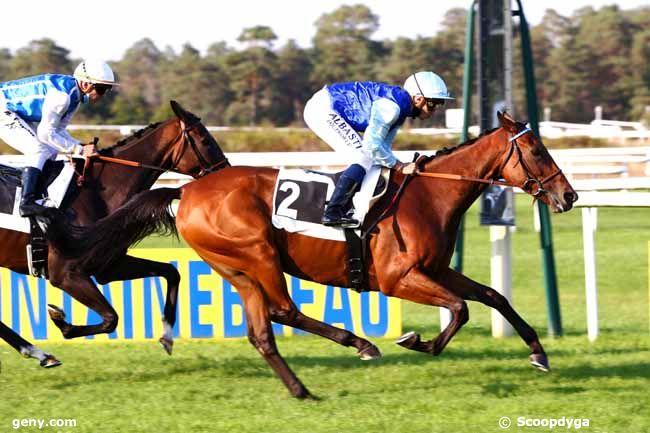 16/09/2020 - Fontainebleau - Grand Prix de Fontainebleau - Fonds Européen de l'Elevage : Arrivée