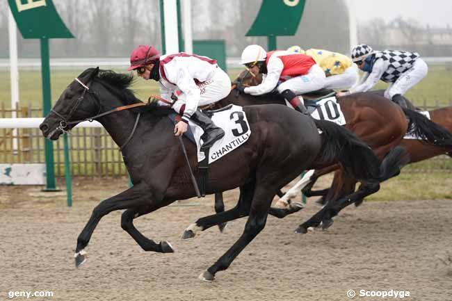 24/01/2020 - Chantilly - Prix Artus : Arrivée