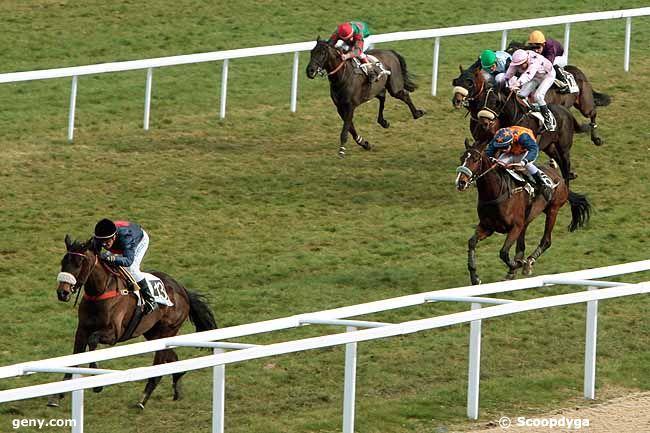 18/01/2011 - Pau - Prix Auguste de Castelbajac : Arrivée