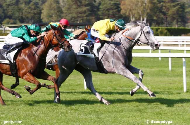 16/09/2020 - Fontainebleau - Prix du Rocher Cassepot : Arrivée