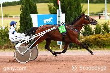 12/06/2020 - Rouen-Mauquenchy - Prix Eudora : Arrivée