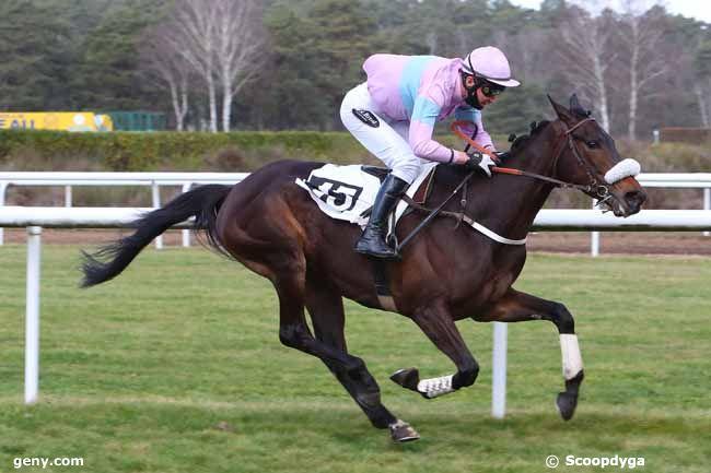 23/02/2021 - Fontainebleau - Prix de la Société des Courses de Craon : Arrivée