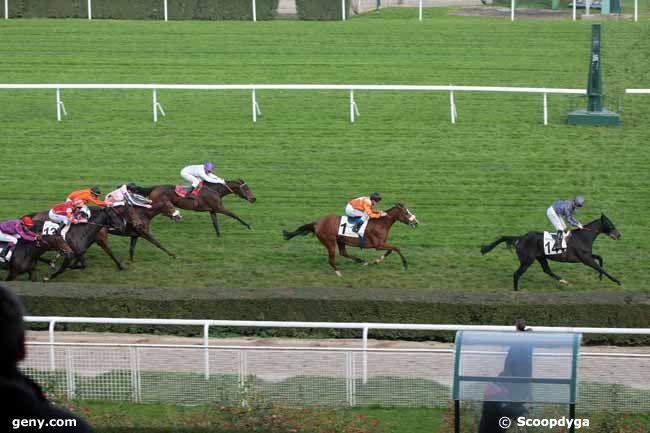 15/11/2012 - Saint-Cloud - Prix de l'Elevage : Arrivée
