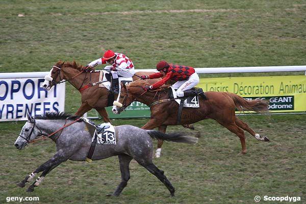 13/01/2009 - Pau - Prix Auguste de Castelbajac : Arrivée