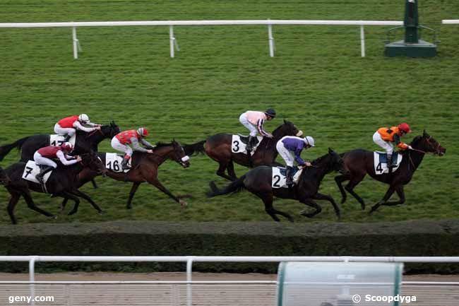 15/11/2012 - Saint-Cloud - Prix des Haras : Arrivée