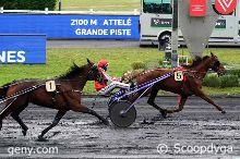 15/02/2021 - Vincennes - Prix de Senlis : Arrivée