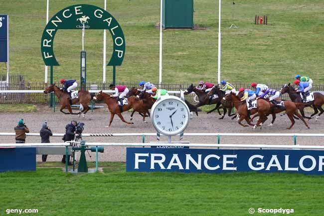 14/02/2020 - Chantilly - Prix de la Fontaine Saint-Gervais : Arrivée